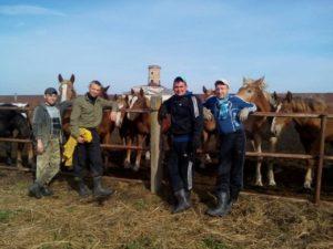 фото на фоне коней с друзьями из социального центра помощи алкозависимым