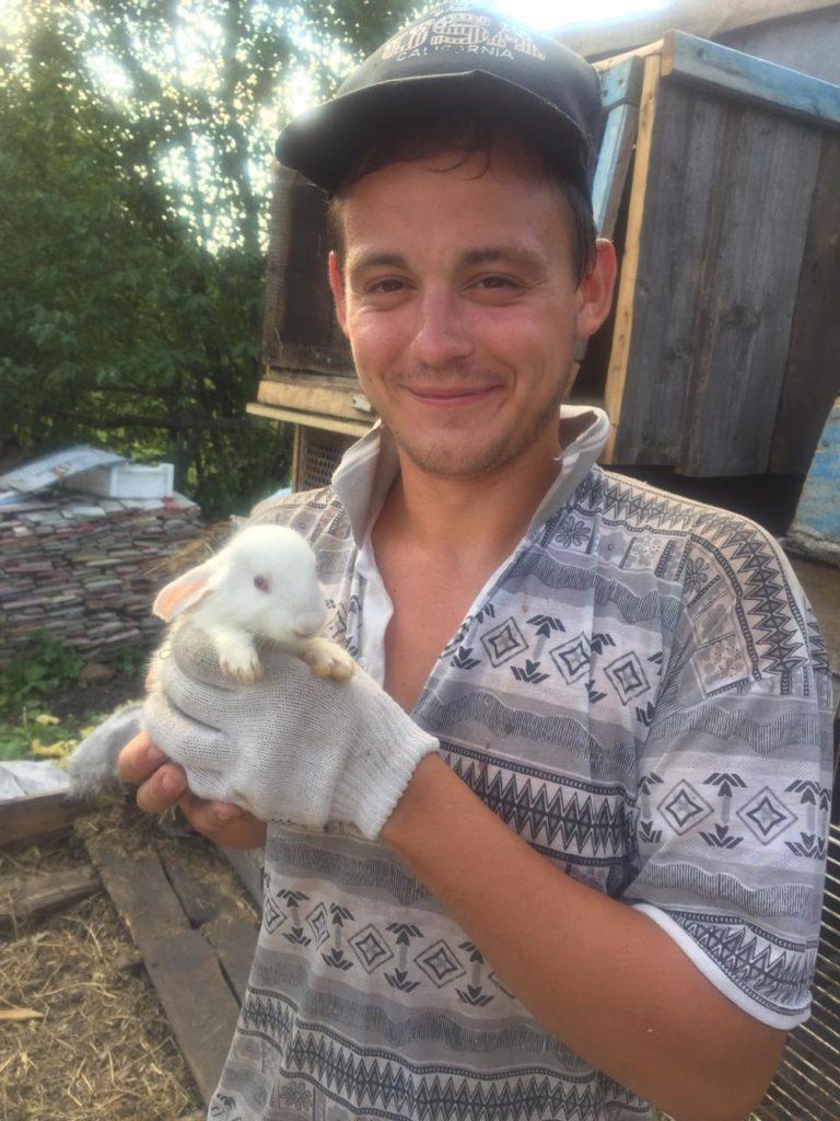 Пушистые кролики